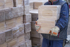 Worker carries packages of beech wood profiles Stock Photography