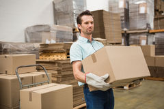 Worker carrying box in warehouse Royalty Free Stock Image