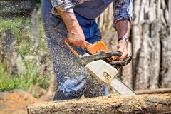 Worker with chainsaw cutting wood. Forest Stock Photos