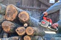 Worker With Chainsaw. Lumberjack Worker in protective safety work wear With Chainsaw at Forest Royalty Free Stock Photos