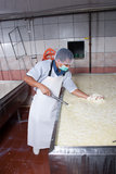 Worker checking fermentation of milk Stock Images