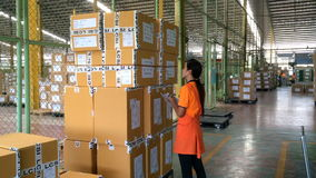 Worker checking finished goods carton. stock video footage