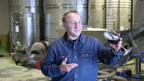 Worker checks  equipment on winery stock video footage