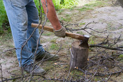 The worker chops the branches. Royalty Free Stock Images