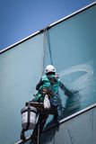Worker cleaning windows service on high rise building Royalty Free Stock Photos