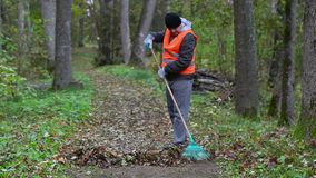 Worker collect leaves in the park on the path stock footage
