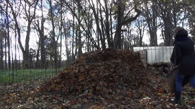 Worker compost leaves bag stock video