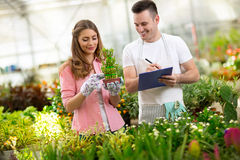 Worker couple in nursery Royalty Free Stock Image