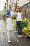 Worker and customer in a green house Royalty Free Stock Photo
