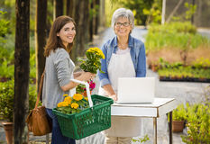 Worker and customer in a green house Stock Images