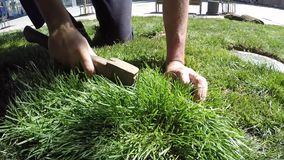 Worker cuts the grass with an ax for a new lawn slow motion. Close-up Worker cuts the grass with an ax for a new lawn slow motion stock footage