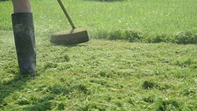 The worker cuts the grass using a lawnmower. Outdoors. Working weed whacker grass in the garden cuts the green regrown grass to make a beautiful design stock video footage