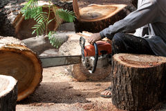 Worker cutting bark wood Royalty Free Stock Photo