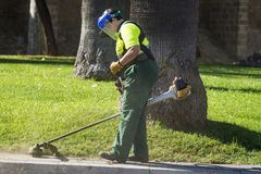 Worker cutting grass Stock Images