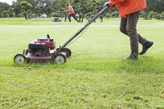 Worker cutting grass field with Lawn mower Stock Photography