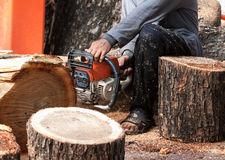 Worker cutting tree wood  by engine saw Stock Photography