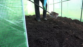 Worker dig with shovel compost in new greenhouse. stock video