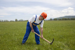 Worker is Digging by Pickaxe on a Green Field Stock Images