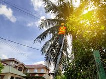 A worker doing maintenance at telecommunication pole. Sun flare. royalty free stock photos