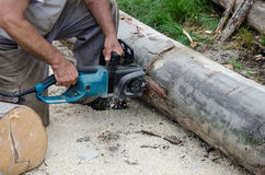 Worker with electric chainsaw. Worker who performs surgery with a electric chainsaw cutting Stock Photos