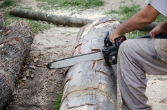 Worker with electric chainsaw. Worker who performs surgery with a electric chainsaw cutting Royalty Free Stock Photos