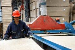 Worker in the factory of doors Stock Image