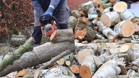 worker with gas chain saw, sound, cutting, sawing wood for firewood stock video