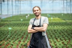 Worker in the greenhouse. Portrait of handsome smiling worker in uniform standing in the greenhouse with green plantation on the background Royalty Free Stock Photo