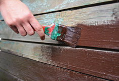 Worker hand with brush painting and repair wooden wall. Paint Old Wooden Surface. Royalty Free Stock Images