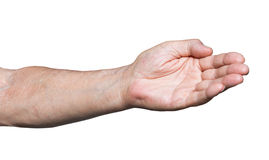 Worker hand pointing direction - hand gesture Royalty Free Stock Photo