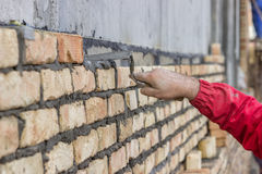 Worker hand spread a mortar bed Stock Photo