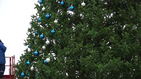 A worker hangs a festive balls on a large urban Christmas tree. stock footage