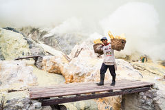 Worker at Ijen crater in Java, Indonesia carries a basket of sulphur Stock Images