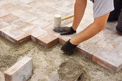 Worker installing paver Royalty Free Stock Image