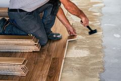 Worker installing wooden flooring boards. On the house floor with applied adhesive stock photo