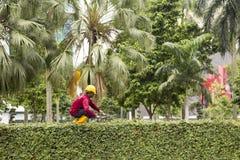 Worker in Kuala Lumpur cutting green fence Royalty Free Stock Image