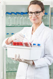 Worker of lab holding box Stock Images