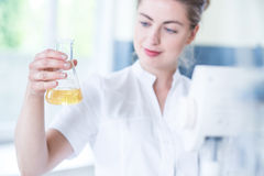 Worker of laboratory holding flask Royalty Free Stock Photo
