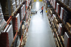Worker in Large Warehouse. Side view of warehouse worker pulling moving cart between tall shelves with packed boxes and goods royalty free stock photography