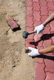 Worker laying red concrete paving blocks. Royalty Free Stock Photography