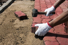 Worker laying red concrete paving blocks. Royalty Free Stock Photo