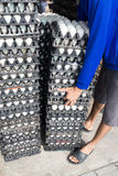 Worker life sort egg panel in wholesale market Stock Photography
