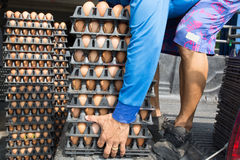 Worker life sort egg panel in wholesale market on truck Stock Photo
