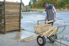 Worker lifting strips wood from trolley. Worker lifting strips of wood from trolley Royalty Free Stock Images