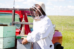 Worker loading beehives on truck. Worker placing full hives on truck stock image