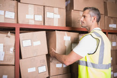 Worker loading up shelf in warehouse Stock Photos