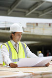 Worker Looking At Plans On Site Royalty Free Stock Image