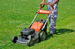 Worker moving lawn on the meadow Royalty Free Stock Photo