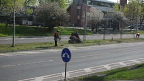 Worker mower trimmer car. Workers cut lawn grass with mower trimmer between street road lines and cars go arround. City center environment care stock video footage