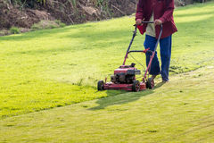 Worker mowing grass Royalty Free Stock Photography
